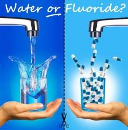 water-or-fluoride.jpg